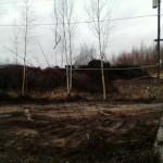 IMG_1717-14-04-17-11-35